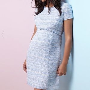 Seraphine Blue Boucle Dress size 8